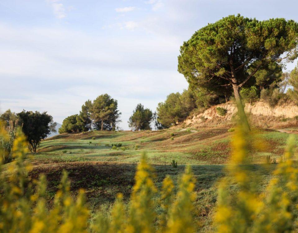 camp de golf generalitat